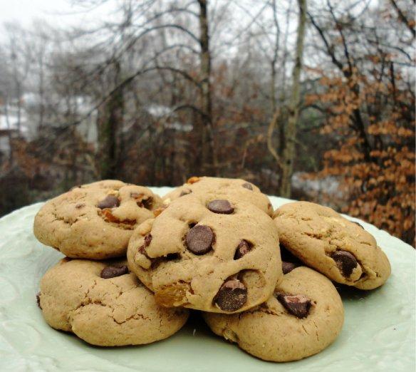 Snowy Cookies